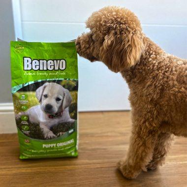 Храна за кучета до 2 години